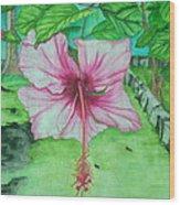 Hawaiian Healing Wood Print