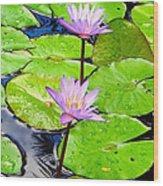 Hawaiian Lily Pads And Flowers_01 Wood Print