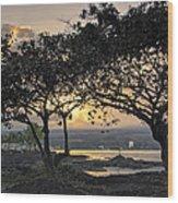 Hawaiian Nights Wood Print
