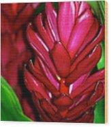 Hawaiian Red Torch Ginger Wood Print