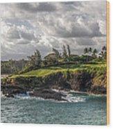 Hawaiian Shores Wood Print