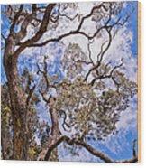 Hawaiian Sky Wood Print