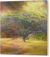 Hawaiian Tree Wood Print