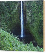 Hawaiian Waterfall Wood Print
