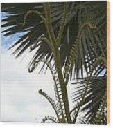 Hawaiiana 18 Wood Print