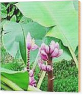 Hawaiiana 22 Wood Print