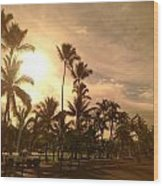 Hawaiian Landscape 7 Wood Print
