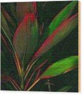 Hawaiiana 28 Wood Print