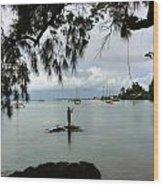 Hawaiiana 33 Wood Print