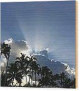Hawaiian Landscape 16 Wood Print