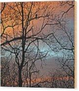Hawk At Dawn Wood Print
