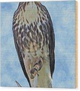 Hawk By Frank Lee Hawkins Wood Print