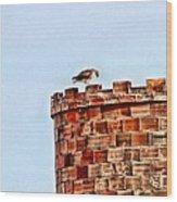 Hawk Castle Wood Print by Rebecca Adams