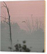 Hawk In Morning Fog Wood Print