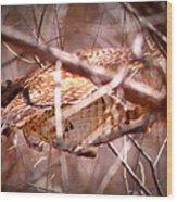 Hawk In The Woods Wood Print