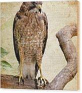 Hawk With Fish Wood Print