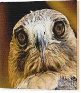 Hawkeye Wood Print