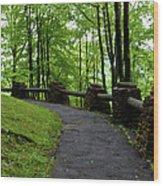 Hawk's Nest Path Wood Print