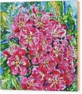 Hawthorn Blossom Wood Print