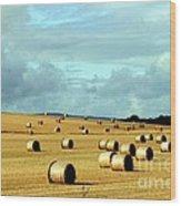 Hay Wood Print by Arie Arik Chen