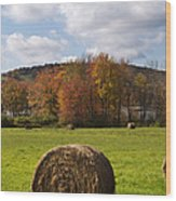 Hay Bale In Country Field Wood Print