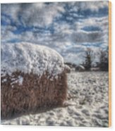 Hay Bale In The Snow Wood Print