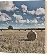 Hay Bales 1 Wood Print