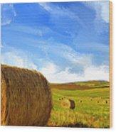 Hay Bales 2 Wood Print