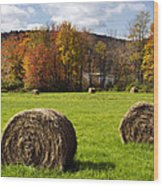 Hay Bales And Fall Colors Wood Print