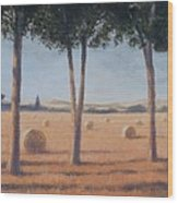 Hay Bales And Pines, Pienza, 2012 Acrylic On Canvas Wood Print