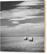 Hay Bales Black And White Wood Print