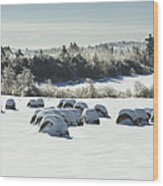 Hay Bales Covered With Snow And Ice In Maine Wood Print