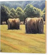Hay Bales Wood Print by Janet King