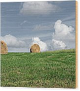 Hay Bales Wood Print by Steven  Michael