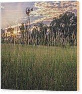 Hay Field Sunset Wood Print