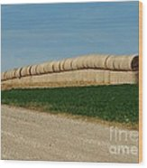 Hay Harvest Wood Print