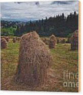 Hay In Stacks In Tatra Mountains Poland Wood Print