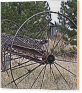 Hay Rake At Purgatory Farm Wood Print
