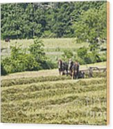Hay Season Wood Print