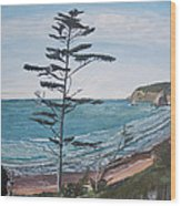 Hay Stack Rock From The South On The Oregon Coast Wood Print