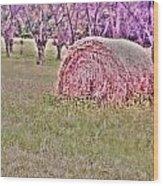 Hay Stack Wood Print by Sarah E Kohara