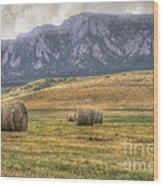 Hay There Wood Print by Juli Scalzi