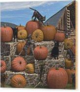 Haycats N' Pumpkins Wood Print