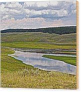 Hayden Valley In Yellowstone National Park-wyoming Wood Print
