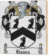 Hayes Coat Of Arms Donegal Ireland Wood Print