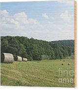 Haymaking Season Wood Print