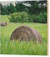 Hayroll Field Wood Print