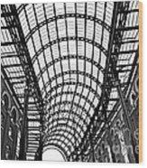 Hay's Galleria Roof Wood Print
