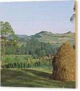 Haystack At The Hillside, Transylvania Wood Print