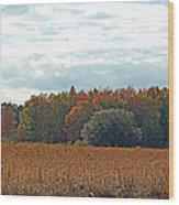 Hazy Autumn Afternoon Wood Print